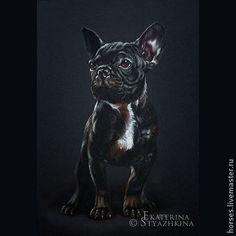 Французский бульдог - чёрный,собака,собачка,щенок,пастель,рисунок,картина