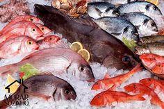 Como escolher peixes e frutos do mar