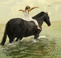 #There is a quote... All horses deserve at one point in their lives to be loved by a little girl.