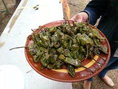 #Fiesta del #Pimiento de Herbón, #Padrón, #Galicia