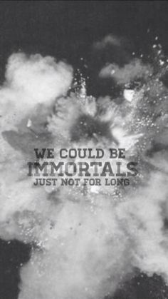 immortals ~ fall out boy