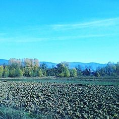 Fields ready for cultivation!  #mugello #tuscany #takemethere #stayandwonder #travelandlife #country #nature
