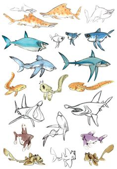 SHARKS Find more at https://www.facebook.com/CharacterDesignReferences if you ar looking for: #art #character #design #model #sheet #illustration #best #concept #animation #drawing #archive #library #reference #anatomy #traditional #draw #development #artist #animal #animals #fish