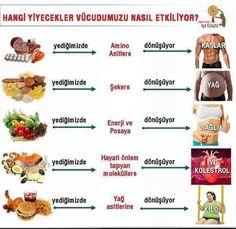 Hangi yiyecekler vücudumuzu nasıl etkiler? pic.twitter.com/RC89HbpkmI