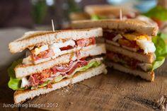 Ham egg and goat cheese Club Sandwich Recipes