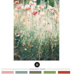 Färgkombination inspo