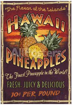 Kauai, Hawaii - Pineapple Vintage Sign - Lantern Press Artwork (Art Print Available) Hawaiian Decor, Hawaiian Art, Hawaiian Tattoo, Vintage Hawaiian, Aloha Vintage, Hawaiian Gardens, Vintage Tiki, Hawaiian Tribal, Vintage Room