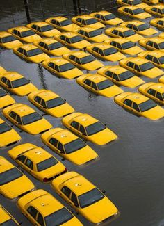 2o6:    Taxis in NYC during the flooding.