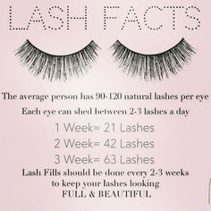Eyelashes naturally shed every single day! Keep up with your Eyelash Extension fill-ins to keep your eyelashes looking their best. Long Lashes, Fake Eyelashes, False Lashes, Artificial Eyelashes, Eyelashes Makeup, Longer Eyelashes, Lash Lounge, Lash Quotes, Tips