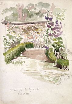Sketch of walled garden at Gwaynynog, Denbigh about  1909 Beatrix Potter: Place as Inspiration - Victoria and Albert Museum