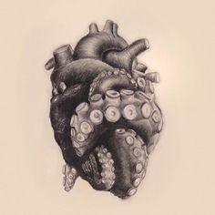 """Repost from - """"Tentacle Heart"""" pencil drawing by artist - drawings_pintous Kunst Tattoos, Body Art Tattoos, Tattoo Drawings, Octopus Tattoos, Octopus Art, Tentacle Tattoo, Octopus Tentacles Drawing, Octopus Tattoo Design, Heart Tattoo Designs"""