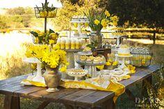 Bridal Shower Desserts, Wedding Desserts, Wedding Themes, Wedding Ideas, Yellow Desserts, Deco Champetre, Lemon Party, Dessert Buffet, Dessert Tables