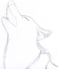 Image result for easy but cool drawings of wolves with dragon wings