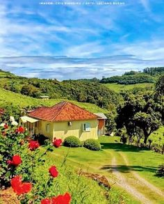 Wonderful Places, Beautiful Places, Abandoned Farm Houses, Garden Animals, Beautiful Nature Wallpaper, Country Landscaping, Green Landscape, Old Farm, Natural Life
