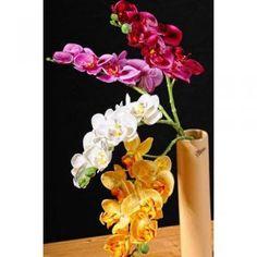 Paramit - Orchidej 50 cm