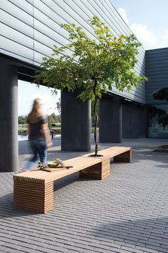 Looking for plants for the interior landscaping of your office or project? Get inspired at Nieuwkoop Europe! Planter Bench, Planters, Indoor Outdoor, Outdoor Decor, Outdoor Furniture Sets, Pergola, Europe, Outdoor Structures, Landscape
