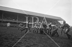 English scrum half, Clarke, kicks to touch while teammates Rogers, Wightman and Dovey hold off Irish,.. Irish Rugby Football Union, Ireland v England, Five Nations, Landsdowne Road, Dublin, Ireland, Saturday 9th February, 1963. See more photos like this at www.irishphotoarchive.ie #vintage #oldphotos #blackandwhite #film #artistic #finearts #ireland #irishhistory #historyphoto #history Scottish Rugby Union, Irish Rugby, University College Dublin, Queen's University, Rugby Poster, Number 14, History Photos, Dublin Ireland, Photo Archive