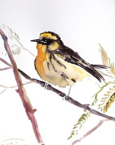 Meadow Lark,  Original watercolor painting, Asian style watercolor art, 10 X 8 in