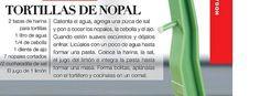 Tortillas de Nopal II
