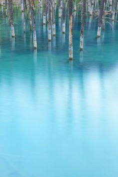 Biei, Hokkaido, Japan 美瑛町 青い池
