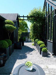 Pergola Over Garage Door Terrace Garden, Garden Spaces, Boxwood Garden, Lawn And Garden, Asian Garden, Brita, Feng Shui Garden, Pergola, Summer House Garden