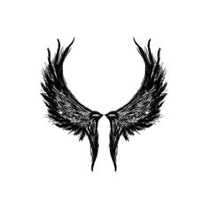 Valkyrie wings idea for women