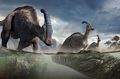 Paleo art. Deinosuchus and Parasaurolophus.