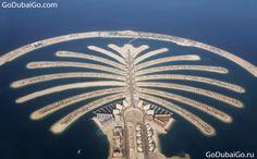 Palm Dubai Pictures > http://www.godubaigo.com/portfolio_category/palm-dubai-pictures/ <