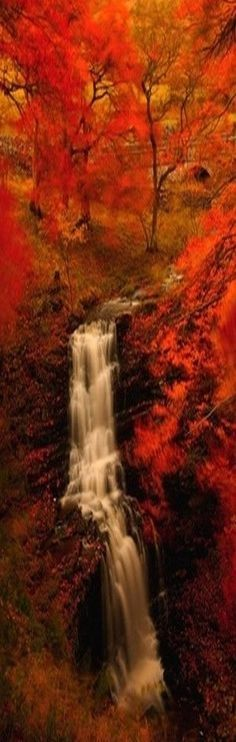 Autumn waterfall nature waterfall trees autumn fall atumn leaves fall photography autumn photography