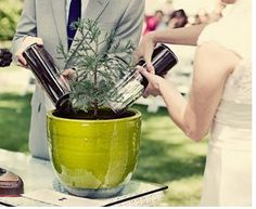 Plant tree or other plant or flower instead of unity candle or sand? (lyons colorado wedding venues)