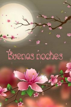 Good Night Greetings, Good Night Messages, Good Night Quotes, Good Morning In Spanish, Birthday Poems, Birthday Wishes, Happy Birthday, Good Night Friends, Good Night Blessings