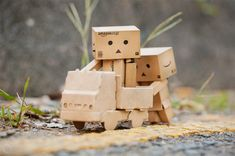 Today Danbo tried the kite, and it seems that he can play it really well. (Image Source: Crusade)