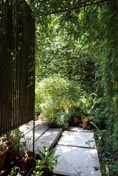 Patio delantero de una casa con piso de durmientes de quebracho, biombo de varillas, enredadera trepando por la pared y macetas de diversos tamaños con plantas.