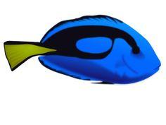 Hanauma Bay Snorkeling - Bay Hours, Pricing and Activities Hanauma Bay, Marine Ecosystem, Tropical Fish, State Parks, The Good Place, Hawaii, Activities, Exotic Fish, Hawaiian Islands