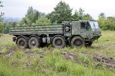 Tatra T 815-790R99 38 300 8x8.1R (přezdívaný Digina)