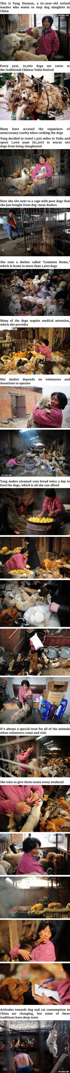 Chinese Woman Travels 1,500 Miles And Pays $1,100 To Save 100 Dogs From Dog-Eating Festival