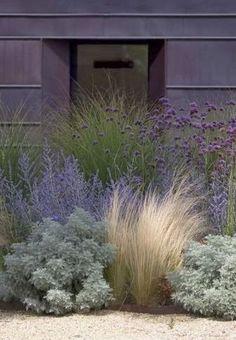 Aménagement paysager moderne : idées de design jardin paysager - inspirace možná podél domu vpředu (u silnice) – vysypané kačírkem návrh: traviny, verbe -