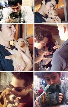 With puppies. Dylan O'Brien with freaking puppies.