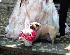oggi sposi