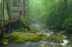 Bill Lea Photography  Roaring Fork Motor Trail  Photo Number _AAF9802