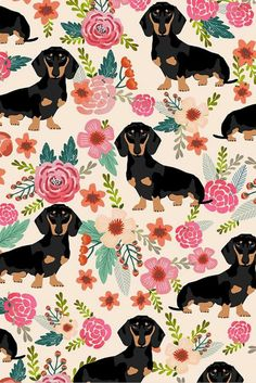 Colorful fabrics digitally printed by Spoonflower – doxie flowers florals dachshund dachshunds fabric dog cute pet dog fabric for baby leggings cute girls sweet flowers - Tiertapete iphone Arte Dachshund, Dachshund Love, Daschund, Dog Wallpaper Iphone, Wallpaper Backgrounds, Iphone Backgrounds, Trendy Wallpaper, Dog Background, Dog Illustration