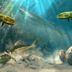 [how much are coursera courses] [University of Alberta] Paleontology: Early Vertebrate Evolution Short Courses, Free Courses, Online Courses, Teach Online, University Of Alberta, Certificate Courses, Vertebrates, Java, Dinosaurs
