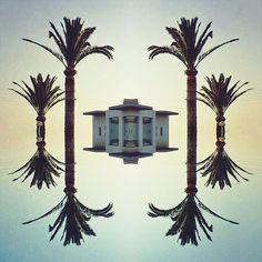 ...surrounded by palms. . . #art  #artsy  #arty  #artoftheday  #artlife  #artphotography  #fantasy  #artes  #olympusnorge #konst  #藝術  #艺术  #アート  #미술  #mextures #mexturesapp #mirrored #building #architecture #travelphotography #olympuscamera #letsgosomewhere #cool #ourmag  #fotografi #levetation  #ifyouleave #broadmag #somewheremagazine #artofvisuals . . @fubiz