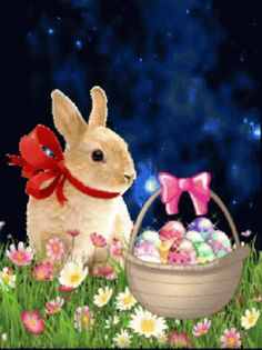 Easter Bunny easter easter eggs easter decorations easter bunny easter quote happy easter easter gifs easter greeting easter wishes happy easter friends and family animated easter Easter Art, Easter Crafts, Easter Eggs, Easter Ideas, Happy Easter Quotes, Happy Easter Wishes, Easter Bunny Pictures, Bunny Images, Easter Wallpaper