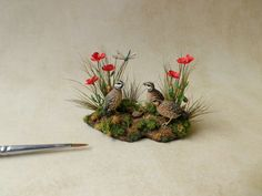 Common quails by Beth Freeman-Kane, M.A.A. - Wildlife Miniaturist