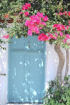 Flowers in Sifnos, Greece Bougainvillea Care, Greece Islands, Travel Info, Greece Travel, Inspired Homes, Plan Your Trip, Windows And Doors, Exterior Design, Door Knobs