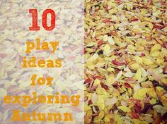 Playful Learners: 10 ideas for exploring Autumn