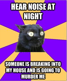 Anxiety Cat- him and I should be besties. We are on the same wavelength.