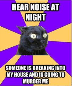 I am Anxiety Cat.