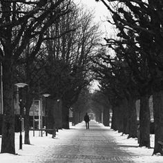 Photography is my hobby. It takes me to awesome places. Snow, Black And White, Awesome, Places, Pictures, Photography, Outdoor, Photos, Blanco Y Negro